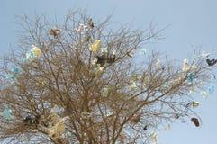 Plastic die zakken in dode boom worden gevangen Stock Afbeeldingen