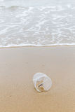 Plastic disposable cup left on sandy beach show environment poll Royalty Free Stock Images