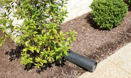 Drainage Pipe. A plastic drainage pipe allows rainwater to run off of a residential home Stock Image