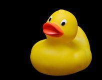 Plastic duck Royalty Free Stock Images