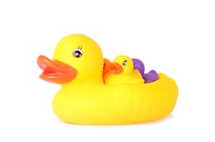 Plastic duck family isolated on white background. Plastic duck family isolated on a white background stock images