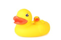 Plastic duck family isolated on white background. Plastic duck family isolated on a white background stock image