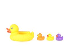 Plastic duck family isolated on white background. Plastic duck family isolated on a white background royalty free stock image