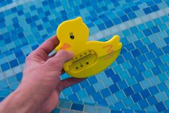 Plastic duck thermometer Royalty Free Stock Photography