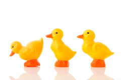 Plastic ducks Royalty Free Stock Photo