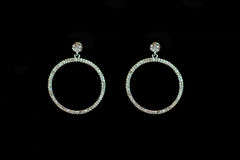 Plastic earrings circle. On a black background Royalty Free Stock Photo
