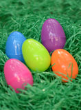 Plastic easter eggs. Colorful plastic easter eggs in green grass Stock Photography