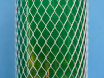 Plastic fishnet protection Stock Photo