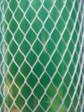 Plastic fishnet protection Stock Photos