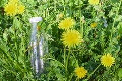 Plastic fles in groen gras in de bosmilieuvervuiling door plastiek bescherming van ecologie De Dag van de aardebescherming stock afbeeldingen