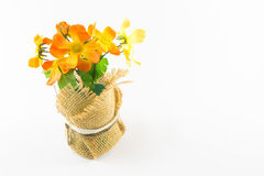 Plastic flower in bloom pot Stock Photo