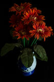 Plastic Flower in ceramic vase  on black Royalty Free Stock Photo