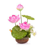 Plastic flower for decoration royalty free stock photos