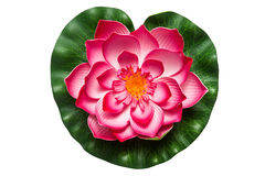 Plastic flower of a lotus Royalty Free Stock Images