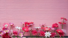 The plastic flower with pink wall Stock Photo