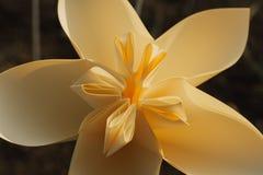Plastic flower plumeria stock photos