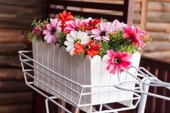 Plastic flower in pots Stock Photo