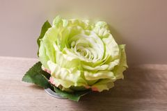 Plastic flower props. On the tablen Royalty Free Stock Photo