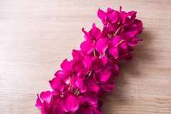 Plastic flower props. On the tablen Royalty Free Stock Photography