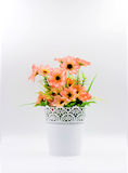 Plastic flower in vase Royalty Free Stock Photo