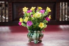 Plastic flower in vase Stock Image