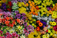 Plastic flowers background 3 Royalty Free Stock Photos