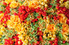 Plastic flowers Stock Image