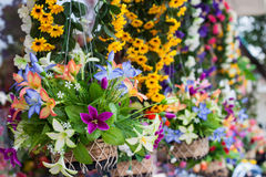 Plastic flowers Royalty Free Stock Images