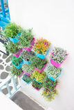Plastic flowers with colorful plastic vase Royalty Free Stock Image