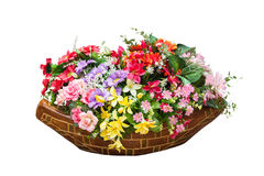 Plastic flowers Stock Images