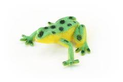 Plastic Frog Stock Image