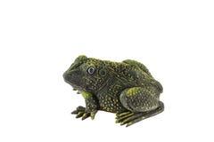 Plastic frog toy on white Royalty Free Stock Photo