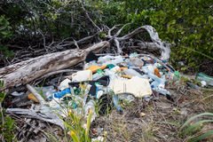 Plastic Garbage in Mangrove Royalty Free Stock Photography