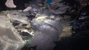 Plastic garbage and other debris floating underwater. Marine pollution. Plastic debris in the water, killing wildlife. Black Sea, Bulgary stock video