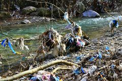 Free Plastic Garbage Polution In Mountain Stream Stock Photography - 113945012