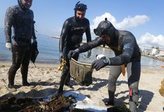 Plastic and garbage removed from the sea during environmental cleaning beach day in Mallorca detail. Scuba divers show some Glass and plastic bottles as other stock photos
