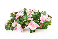 Plastic garland with pink roses Royalty Free Stock Photos