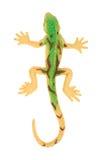 Plastic gecko Royalty Free Stock Image
