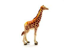 Plastic giraffe. Foreground isolated white background Royalty Free Stock Image
