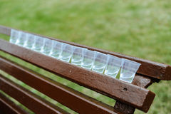 Plastic glasses on a bench. Plastic glasses соят in a row on a bench in park Royalty Free Stock Photo