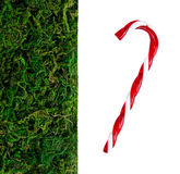 Plastic grass and ornament Royalty Free Stock Images