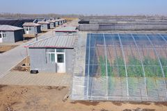 Plastic greenhouse Stock Images