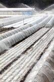 Plastic greenhouse Stock Photos