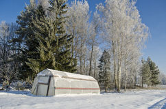 Plastic greenhouse hothouse in winter farm Stock Photo
