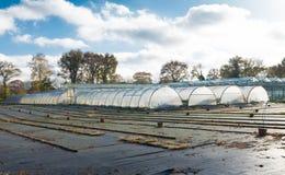 Plastic greenhouses Stock Image