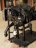 Plastic Horse Stock Photos