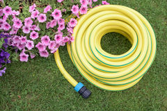 Plastic hose-pipe in the garden Stock Photos
