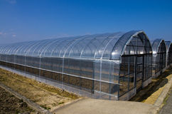 Plastic hothouse. PVC greenhouse, plastic hothouse, or vinyl hothouses stock image