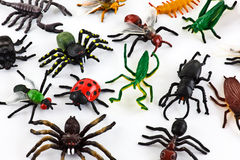 Plastic insects Stock Photography