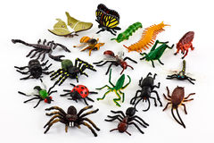 Plastic insects Stock Images